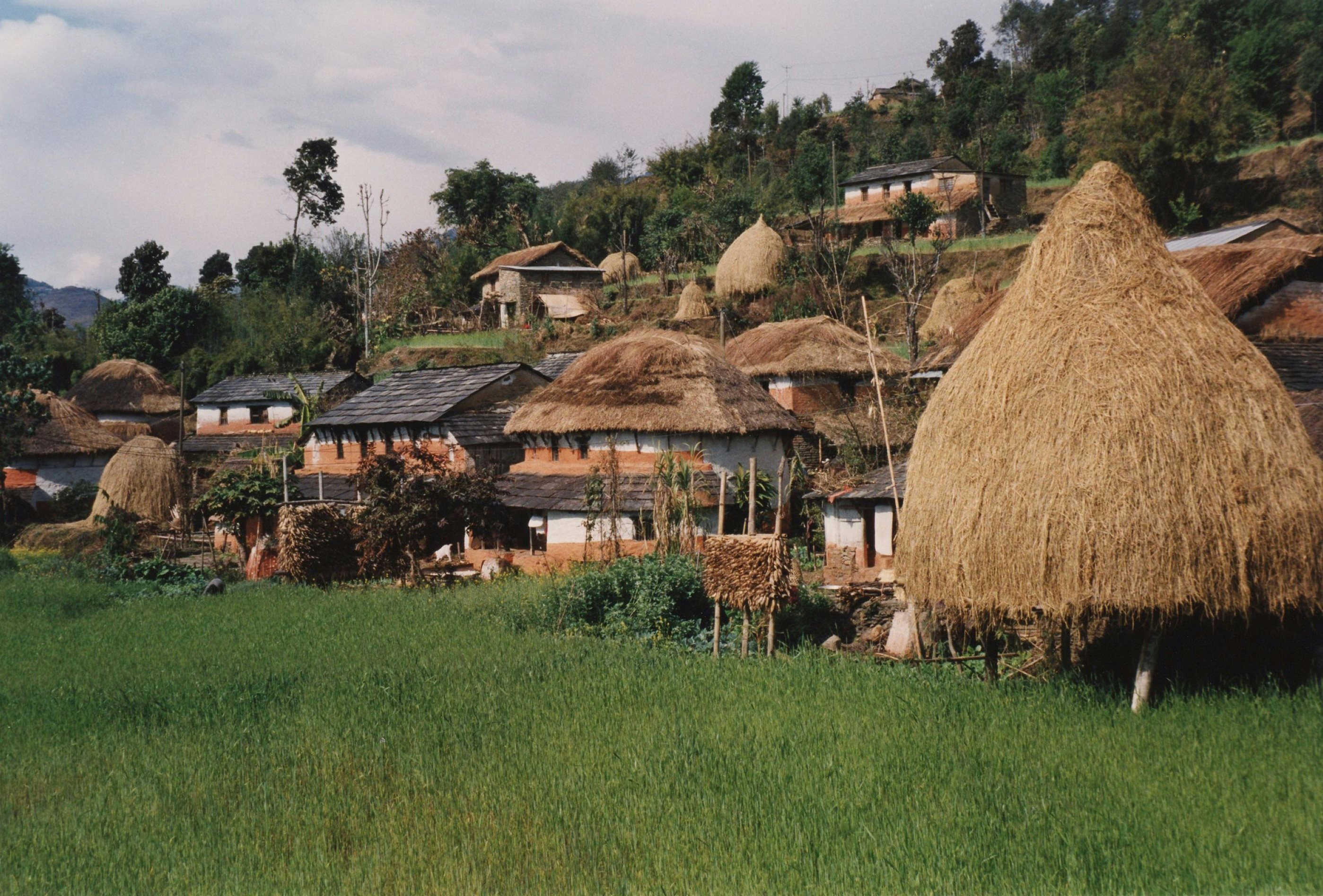 Houses in Countryside